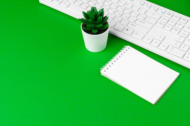 Green office desk with white stationery, copy space