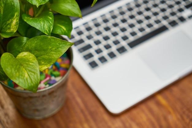 La tecnologia ufficio verde moderna in legno
