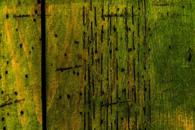Green old wood texture background and copy space