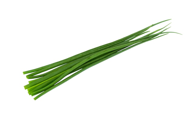Green onion bunch isolated on white background. fresh onion leaf. chives bunch.