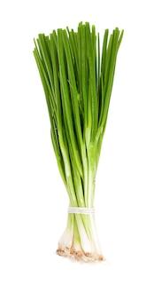 Зеленый лук изолирован