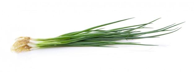 Зеленый лук на белом