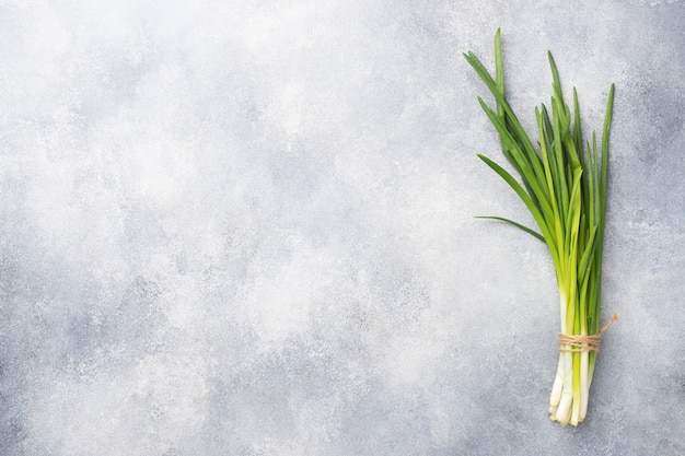 Green onions or shallots on a grey concrete background