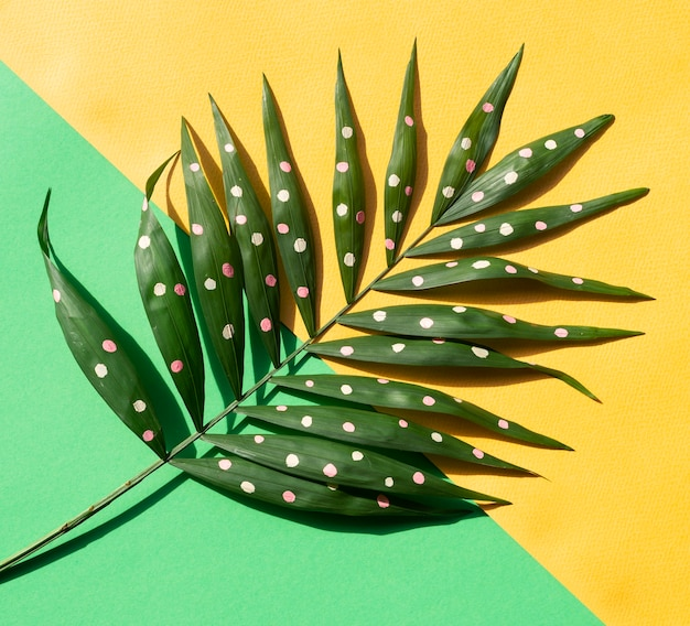 Green painted tropical fern leaves on contrasted background