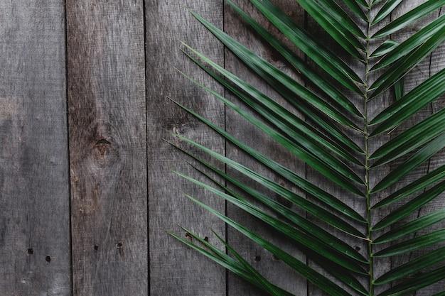 木製の灰色の背景に緑のヤシの葉。高品質の写真