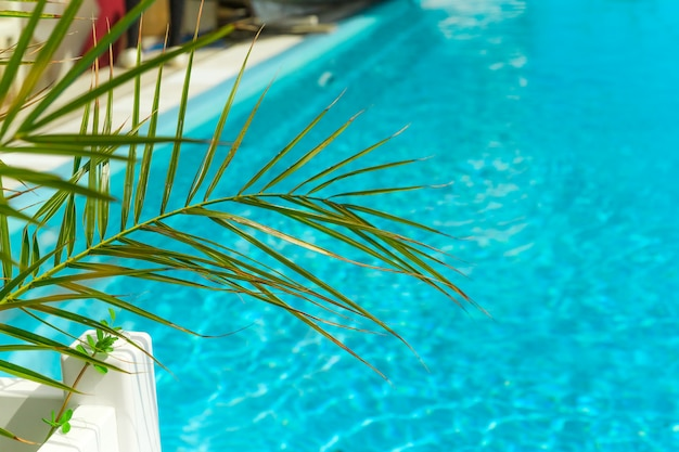 Green palm leaf and turquoise water of the  swimming pool copy space