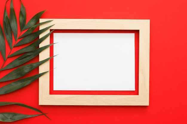 Green palm leaves branch with wooden frame on red backdrop