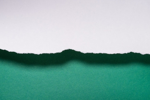 緑のpapaercutシートの背景、テクスチャ