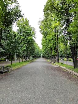 Зеленый парк в клуж-напока, румыния