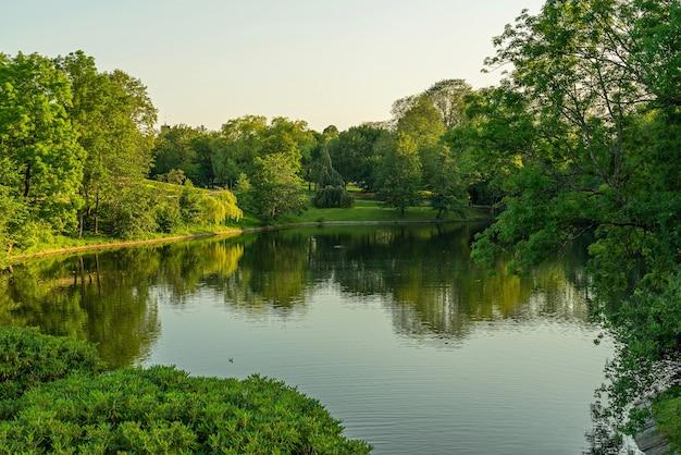 Зеленый парк весной вода озера парка фрогнер с отражением.
