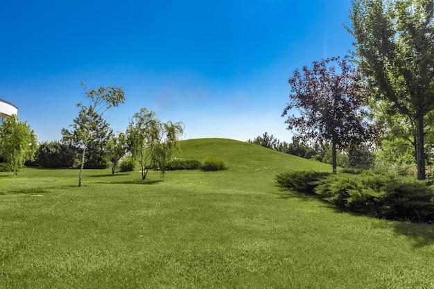 여름에는 잔디 언덕과 나무가 다듬어진 녹색 공원