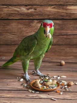 Зеленый попугай ест еду. еда попугая разбросана на деревянном столе.