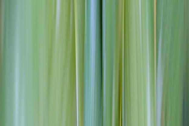 Зеленый узор фона абстрактных графических линий для дизайна на фоне вашей работы.