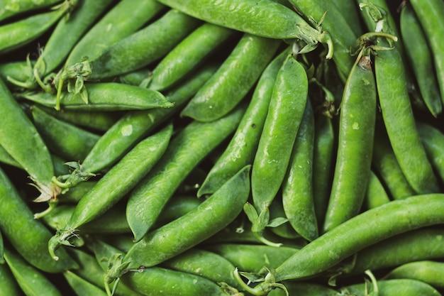녹색 완두콩 배경 무늬 또는 모형. 평면도. 여름 건강한 채식주의 자 음식 개념.