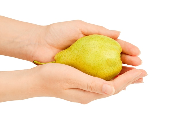 Green pear isolated on white background in woman hands.