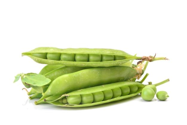 녹색 완두콩