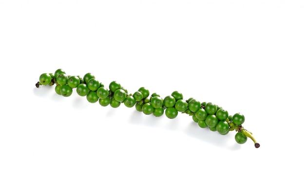 Зеленый перец, изолированные на белом
