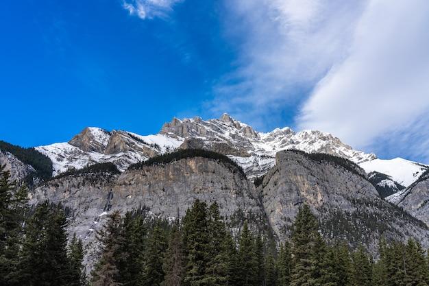 녹색 소나무 숲과 snowcovered 산 푸른 하늘과 흰 구름 백그라운드에서