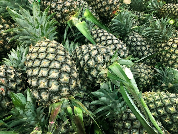Green pineapple on agriclutre farming product