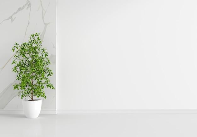 복사 공간이 있는 흰색 거실 내부의 녹색 식물