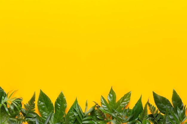 녹색 식물은 노란색 바탕에 나뭇잎. 레트로 빈티지 스타일.