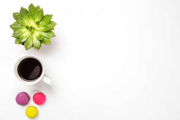 Green plant in a pot, cup of coffee and colorful macaroons on white surface.
