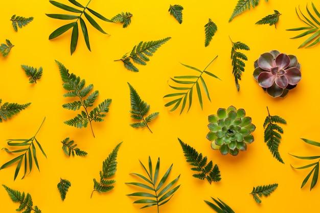 Зеленое растение бесшовные модели на желтом. ретро винтажный стиль.