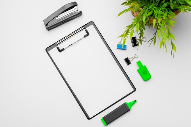 Green plant and stationery accessories with copy space background