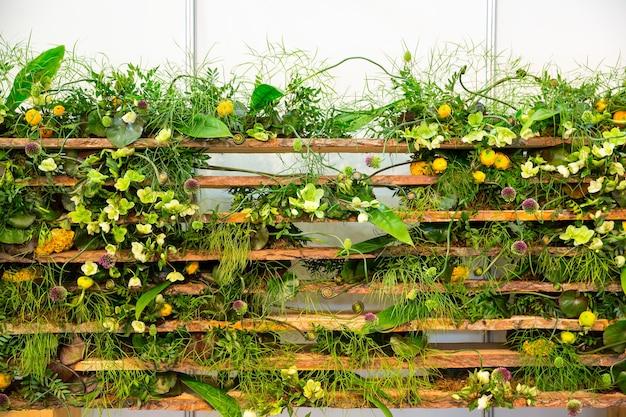 울타리를 둘러싼 노란 꽃을 가진 녹색 식물