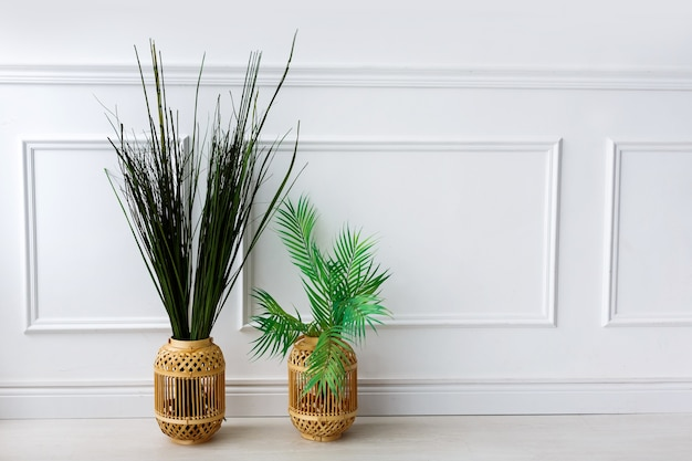 Зеленые растения в вазах и яркая солома на полу перед белой стеной
