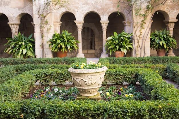 屋外の美しい鉢に緑の鉢植えの植物
