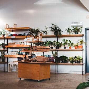 Зеленые растения в горшках на коричневом деревянном столе
