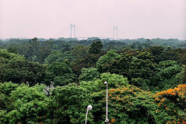 Green and red leaf trees in the park from above with vidyasagar setu, also known as the second hooghly bridge in the background in kolkata, india.