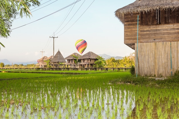 Green rice fields and mountains with colorful balloon at vang vieng, laos