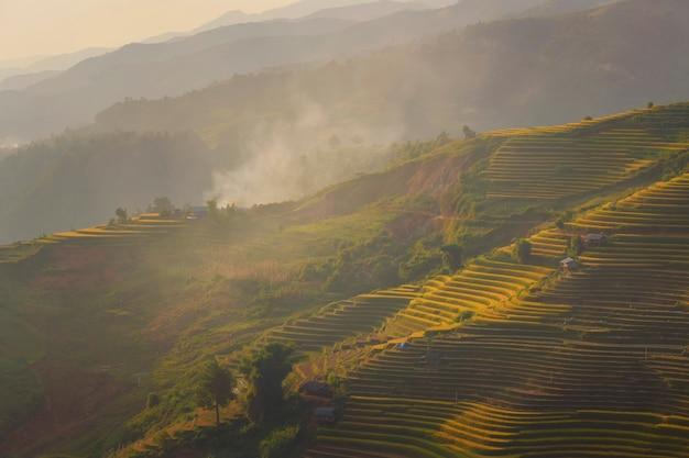ベトナムのムーカンチャイの棚田にある緑の水田