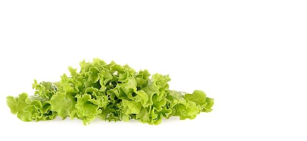 白で隔離の緑のサラダ