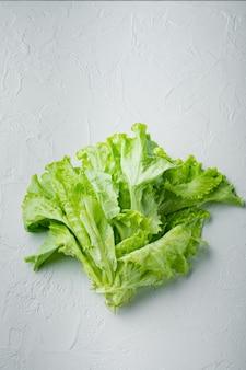 그린 샐러드 양상추 신선한 잎, 흰색 테이블에