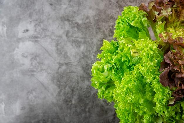 グリーンサラダ。野菜、菜園、ガーデニング