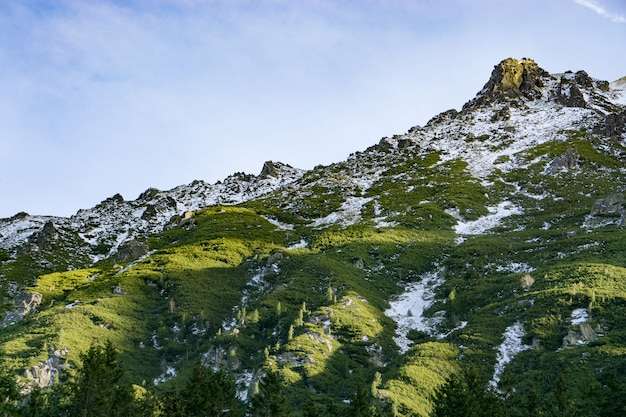 Green and snowy mountains in the polish tatras