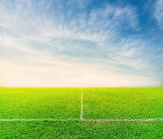 Зеленый футбольное поле с голубым небом