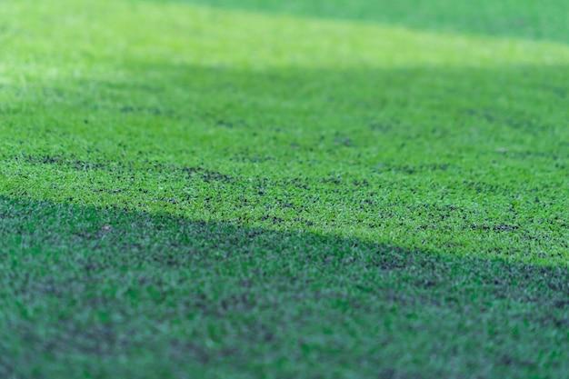 Зеленый футбол, резина, трава, газон, луг для спорта