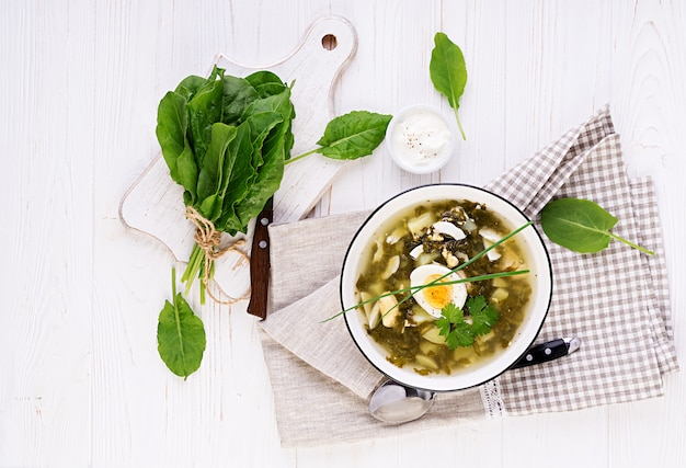 Green soup of sorrel in white bowl