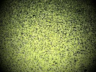 Green speckled vignette background