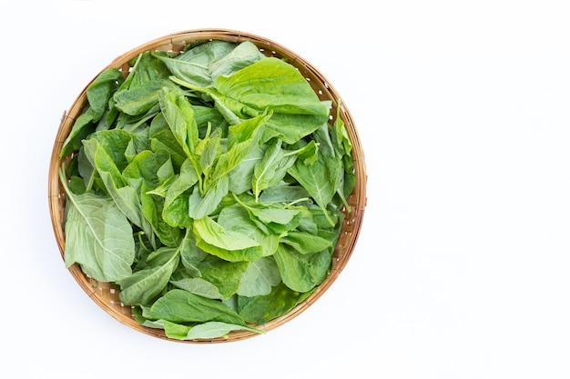 Зеленый шпинат в бамбуковой корзине на белой стене. вид сверху