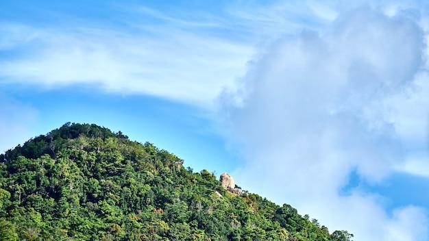 山頂に向かって緑の春の自然。タイ