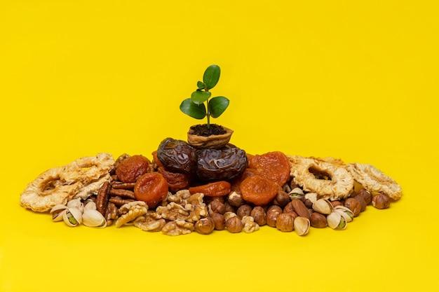 黄色の背景にドライフルーツとナッツを混ぜたクルミの殻の緑の芽。樹木の新年(b'shevat)のユダヤ教の祝日のシンボル