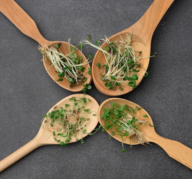 Зеленые ростки чиа, рукколы и горчицы в деревянной ложке на черной поверхности, вид сверху. добавка к здоровому пище, содержащая витамины c, e и k