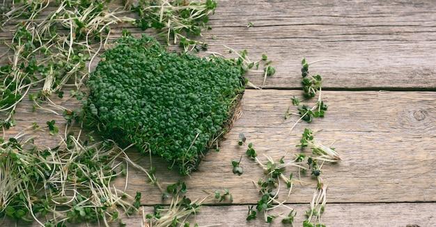Зеленые ростки чиа, рукколы и горчицы на столе из серых деревянных досок, вид сверху. добавка к здоровому пище, содержащая витамины c, e и k