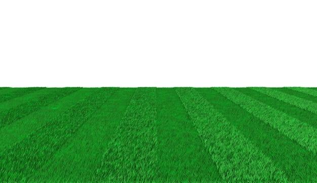 축구를하기위한 녹색 줄무늬 나가는 산책로. 3d 그림