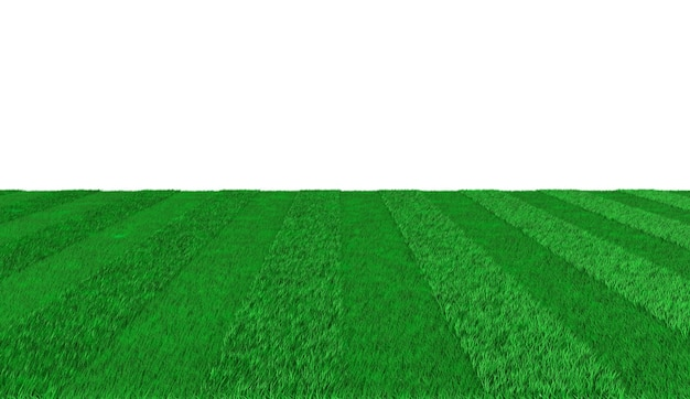 Green striped outgoing promenade for playing football. 3d illustration